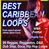Thumbnail BEST CARIBBEAN LOOPS WMA format.zip
