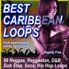 Thumbnail BEST CARIBBEAN LOOPS (Beats, Music samples and loops)