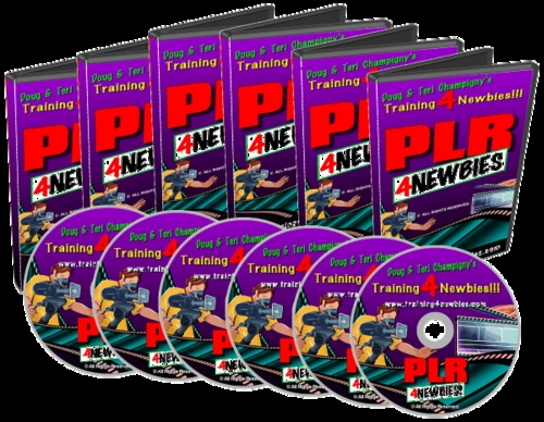 Pay for PLR for Newbise video series