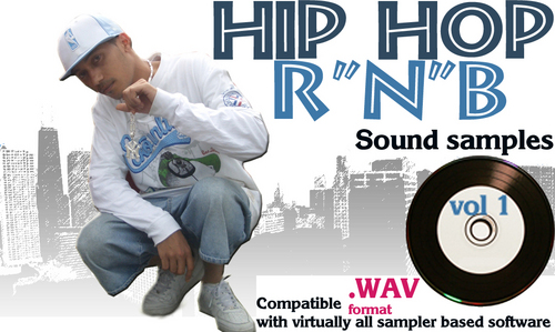 Pay for HIP HOP CREATION   MEGA PACK Sound Samples Loops  547 Wav samples into 7 folders