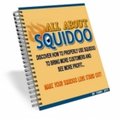 Pay for All About Squidoo with MRR