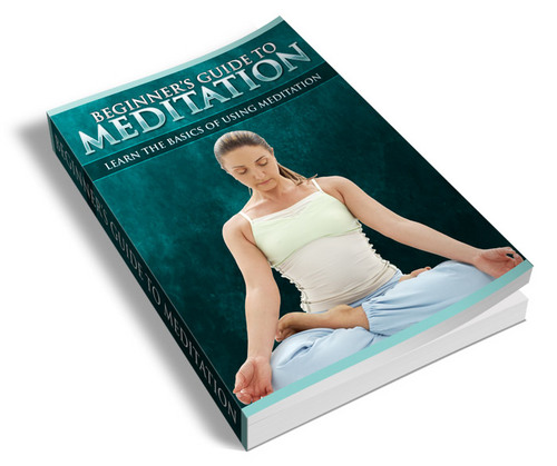 Pay for NEW! Beginners Guide Meditation with PLR - HOT ITEM!!!