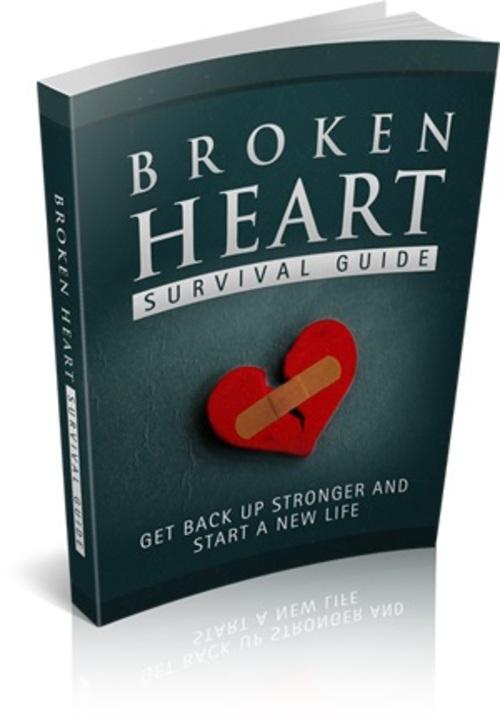 Pay for Broken Heart Survival Guide - MRR