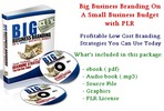 Thumbnail Big Business Branding On A Small Business Budget With PLR