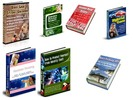 Thumbnail 7 PLR Niches - Webmaster Package