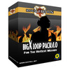 Thumbnail BigX LoopPack Vol 1