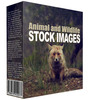 Thumbnail Animal and Wildlife Stock Images