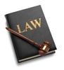 Thumbnail Legal 100 articles Plr.