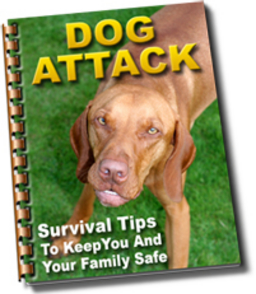 Pay for Surviving a Dog Attack
