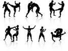 Thumbnail Combat Judo Karate Arnis Guide