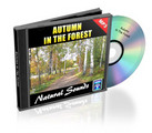 Thumbnail Natural Sounds: Autumn In The Forest Mp3 with Master Resale Rights!