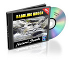 Natural Sounds: Babbling Brook Mp3 with Master Resale Rights