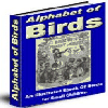Thumbnail Alphabet of Birds Ebook - MASTER RESELL RIGHTS