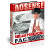Thumbnail *NEW* - Adsense : The Dollar Producing Factory - MASTER RESALE RIGHTS