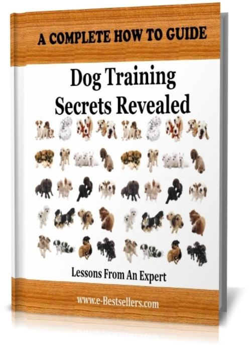 Pay for Dog Training Secrets Revealed: Lessons From An Expert