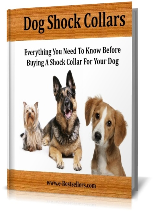 Pay for All About Dog Shock Collars: The Good and The Bad