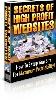 Thumbnail The Secrets to High Profit Websites