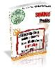 Thumbnail SQUIDOO Profits