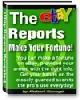 Thumbnail eBay Reports