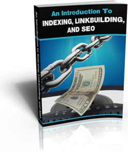 Pay for An Introduction To Indexing Linkbuilding And SEO