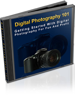 Pay for Digital Photography 101