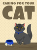 Thumbnail Caring For Your Cat
