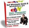 Thumbnail Sell Wholesale Goods & Websites On eBay - Priceless Info