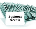 Thumbnail Business Grants & how to get government grants Ebook