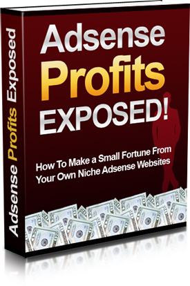 Thumbnail Adsense Profits Exposed