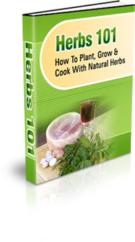 Thumbnail Natural Herbs