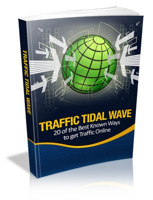 Pay for Traffic Tidal Wave PLR