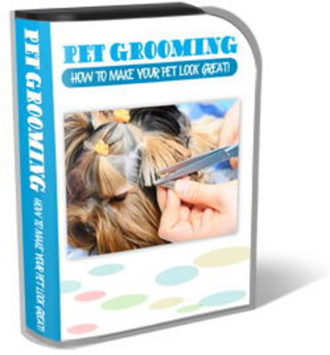 Pay for Pet Grooming Website Template