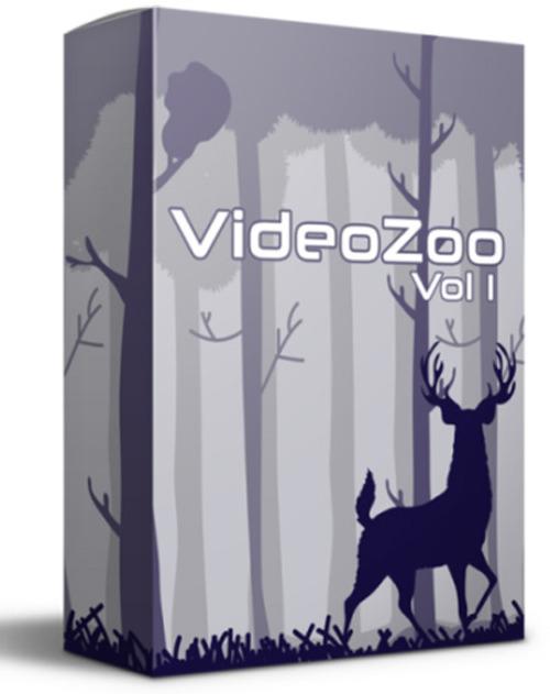 Pay for VideoZoo Vol. 1 - Video Tutorial + Bonus Audio Tracks
