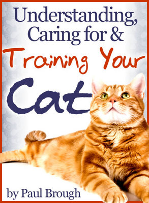 Pay for Understanding, Caring For And Training Your Cat