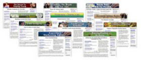 Thumbnail 12 Niche Adsense Sites