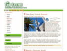 Thumbnail Top Secret Wordpress Theme - Private Label Rights