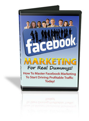 Pay for Facebook Marketing for Real Dummys - Video Series