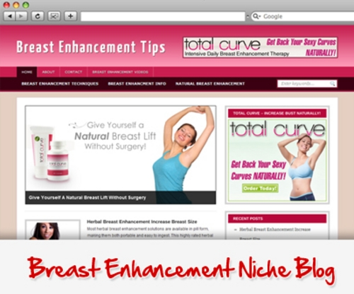Pay for Breast Enhancement Niche Blog