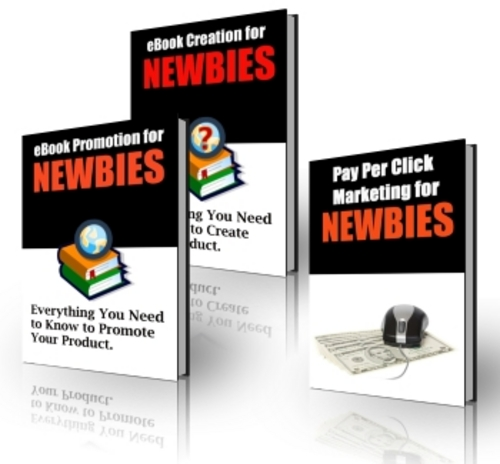 Pay for Ebook Creation and Promotion For Newbies - with PLR + BONUS!
