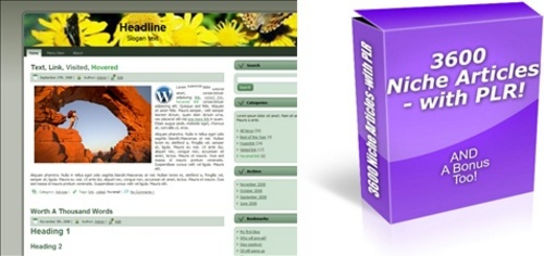 Pay for HOT PLR Pack - 3,600 Articles and 500 WordPress Themes!