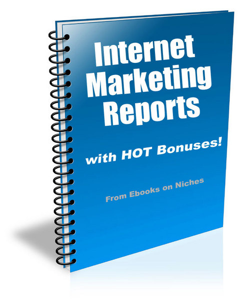 Pay for 10 Reports on Internet Marketing: Vol.2 - with PLR + BONUS!