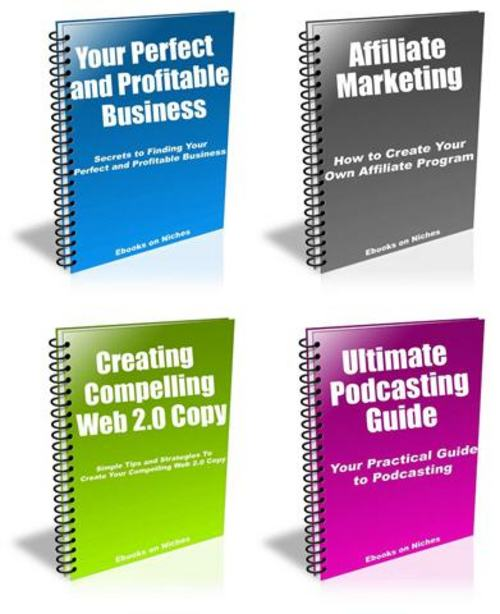 Pay for 4 PRO Internet Marketing Guides for Newbies - with a BONUS!