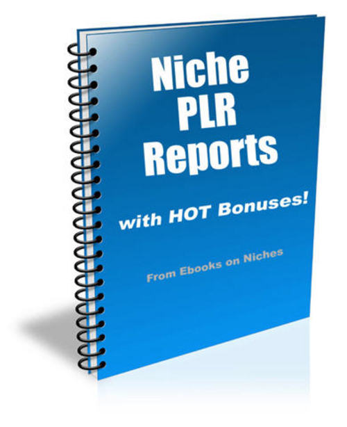 Pay for 9 HOT Niche Reports - with FULL Private Label Rights + BONUS