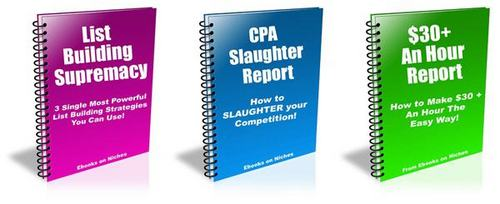 Pay for 3 HOT Reports - with FULL Private Label Rights + BONUSES!