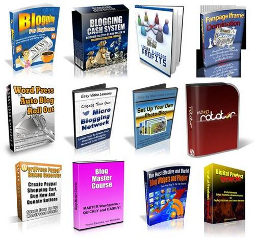 Pay for Ultimate Wordpress Pack2 + 2 Mystery BONUSES!