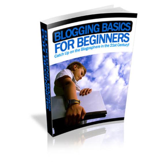 Pay for Blogging Basics for Beginners - with PLR + 2 Mystery BONUSES