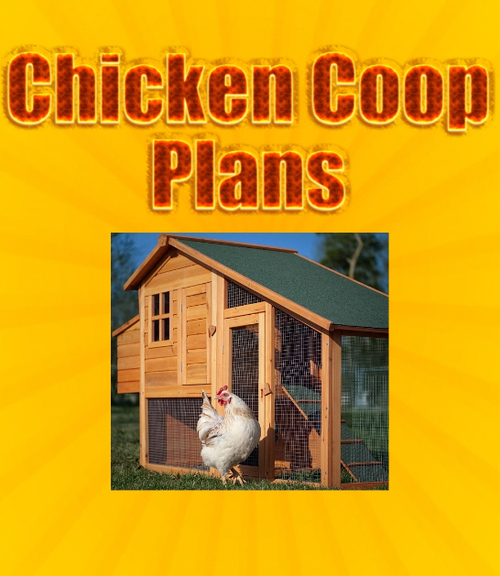 Pay for CHICKEN Coop PLANS