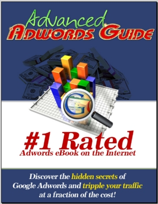 Pay for Advanced Google Adwords Guide
