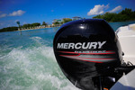 Thumbnail Mercury Outboard 2006 2007 All 4-stroke Repair Manual