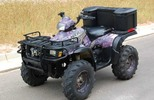 Thumbnail Polaris ATV 2004 Sportsman 400 500 Repair Manual